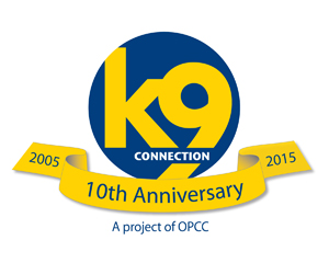 10thAnniversaryLogo_Website_300x240